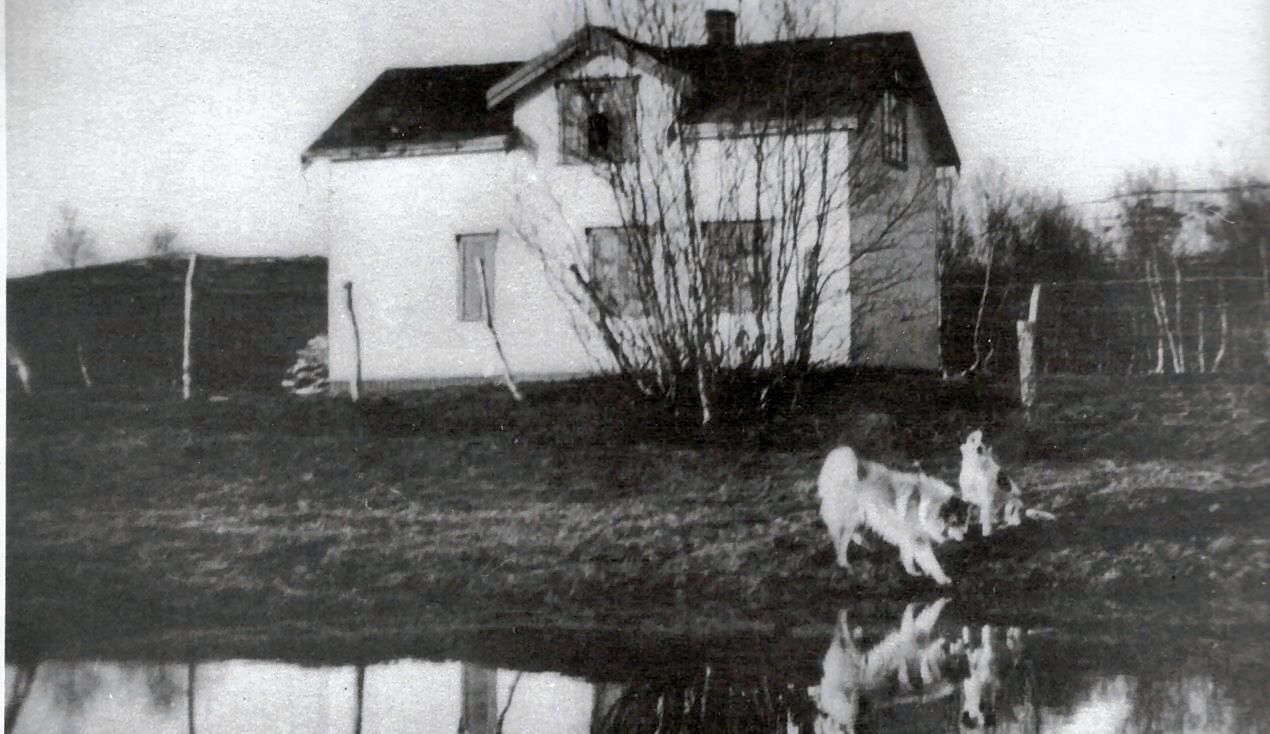 Norskholmen skole